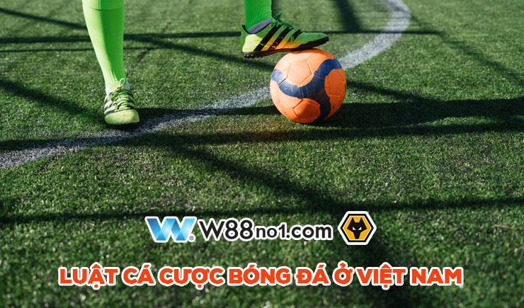 Khám phá luật cá độ bóng đá ở Việt Nam